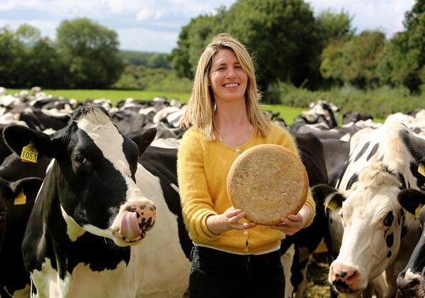 پنیر ایرلندی - سوغات ایرلند