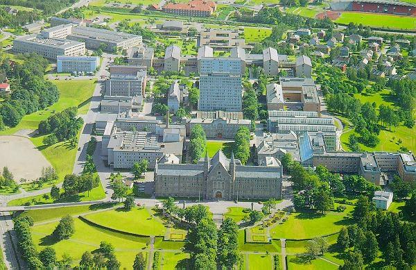 تحصیل پزشکی نروژ - تحصیل پزشکی و دندانپزشکی در نروژ