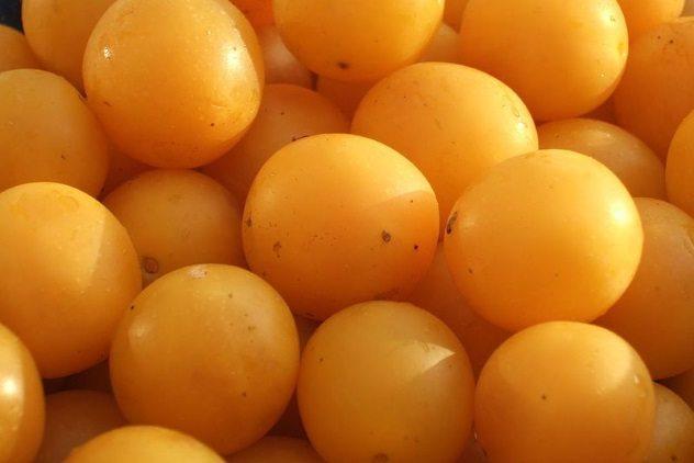 آلوی میرابل - 10 غذای معروف و 10 غذای ممنوع در آمریکا