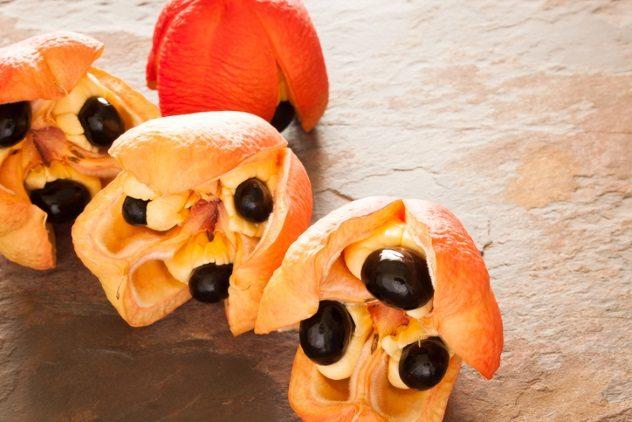 سیب آکی - 10 غذای معروف و 10 غذای ممنوع در آمریکا