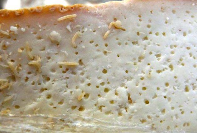 کاسو مارزو - 10 غذای معروف و 10 غذای ممنوع در آمریکا