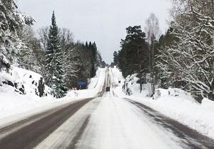 بارش برف سنگین ۹ هزار خانه در سوئد را در تاریکی فرو برد - بارش برف سنگین ۹ هزار خانه در سوئد را در تاریکی فرو برد