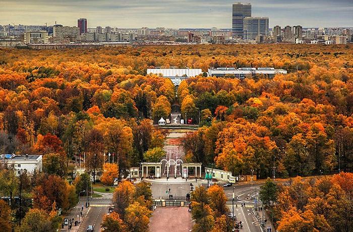 پارک سوکولنیکی مسکو 2 - پارک سوکولنیکی مسکو روسیه