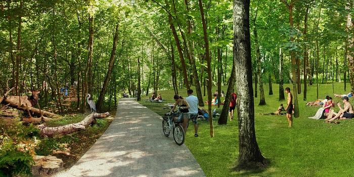 پارک سوکولنیکی مسکو 4 - پارک سوکولنیکی مسکو روسیه