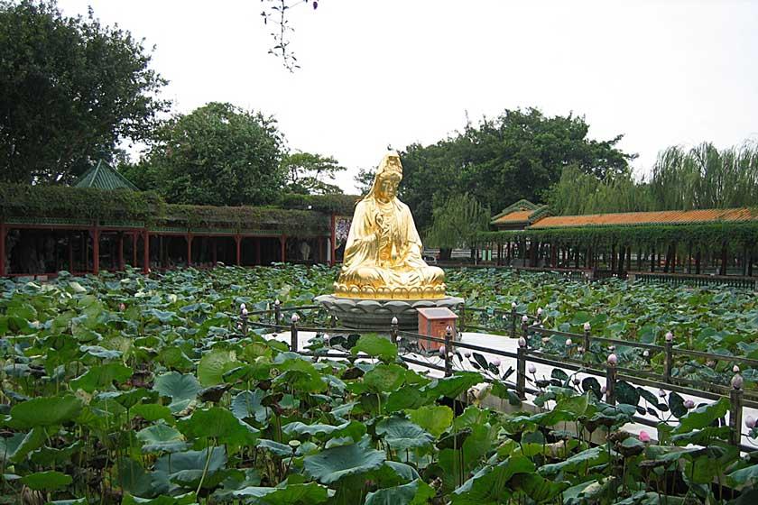 باغ بائومو 2 - باغ بائومو گوانجو