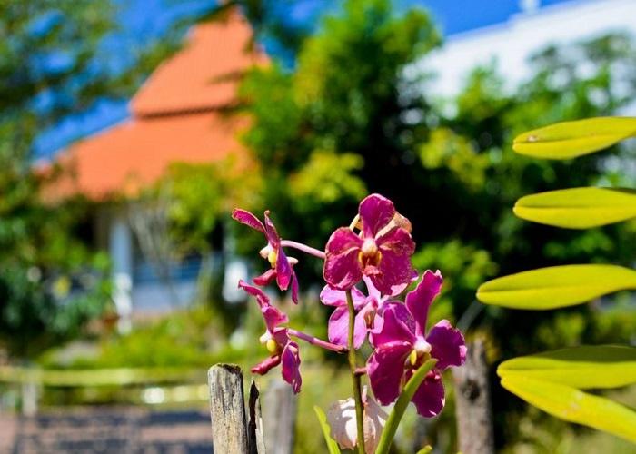 باغ گیاه شناسی پردانا 3 - باغ گیاه شناسی پردانا کوالالامپور مالزی