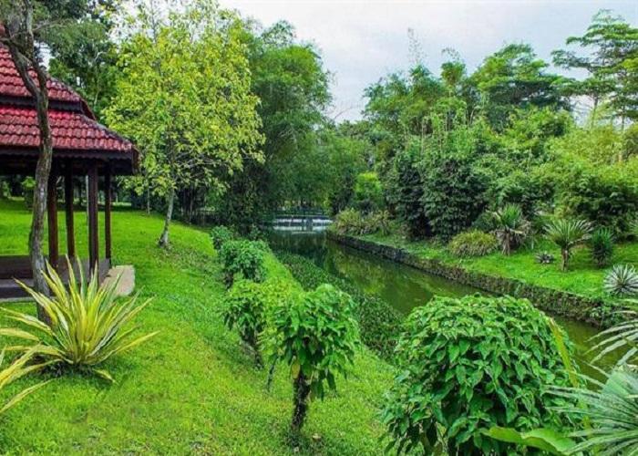 باغ گیاه شناسی پردانا 5 - باغ گیاه شناسی پردانا کوالالامپور مالزی