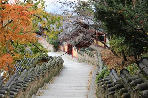 معبد بیومیوزا 2 - معبد بیومیوزا بوسان کره جنوبی