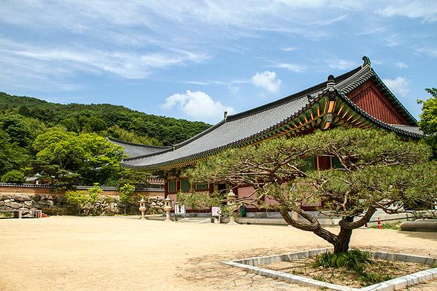 معبد بیومیوزا 4 - معبد بیومیوزا بوسان کره جنوبی