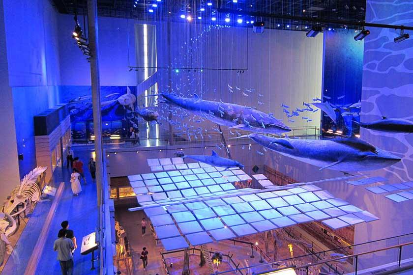 موزه گوانگ دونگ 4 - موزه گوانگ دونگ گوانجو چین