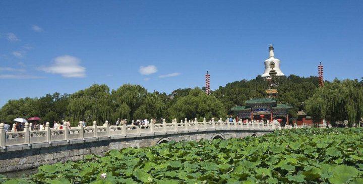 پارک بی های پکن 2 - پارک بی های پکن چین