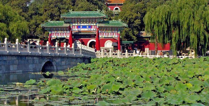 پارک بی های پکن 4 - پارک بی های پکن چین