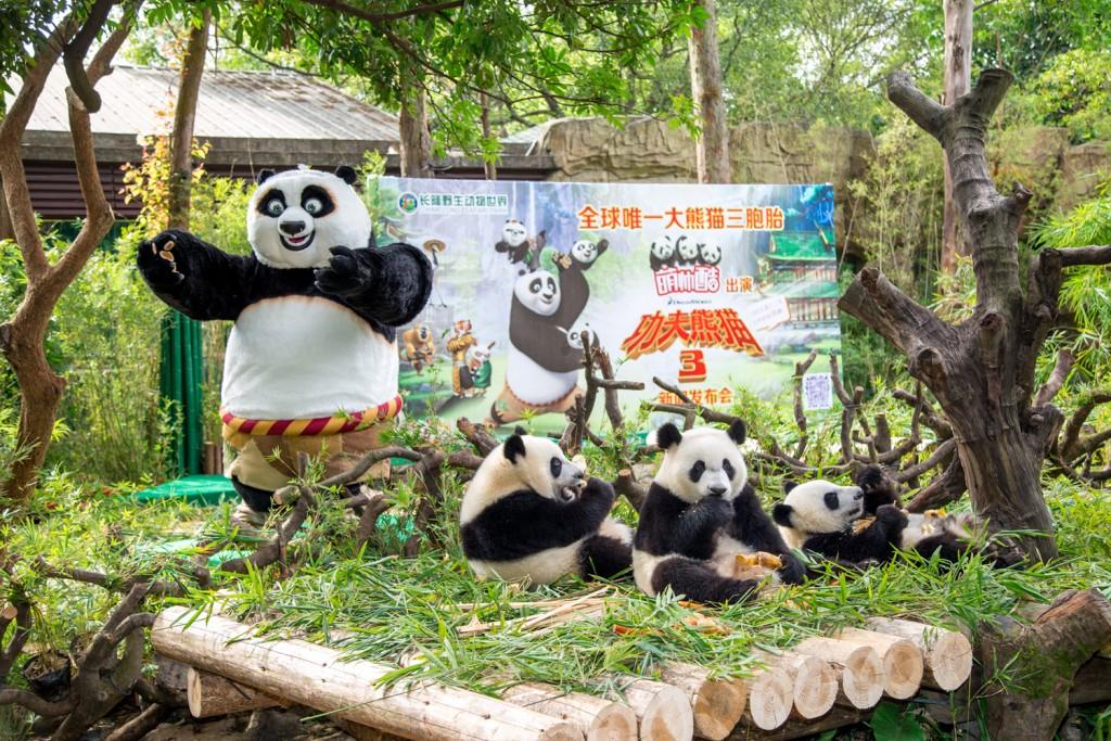 پارک سافاری زیانگ جیانگ 4 - پارک سافاری زیانگ جیانگ گوانجو چین