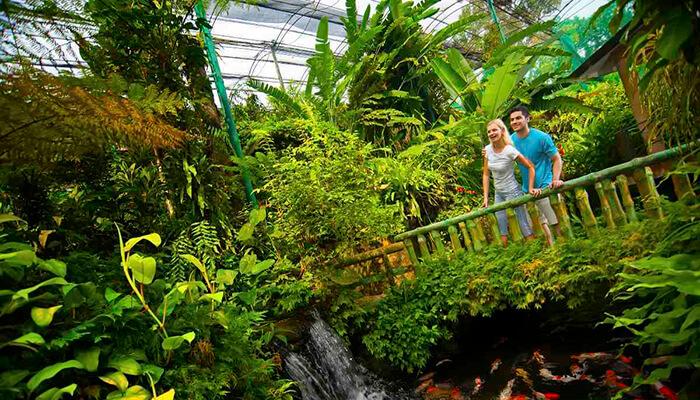باغ پروانه کوالالامپور مالزی