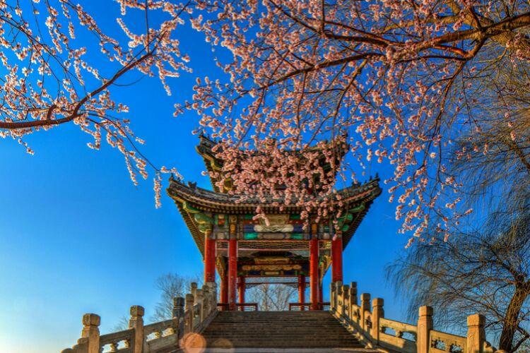 کاخ تابستانی پکن 1 - کاخ تابستانی پکن چین