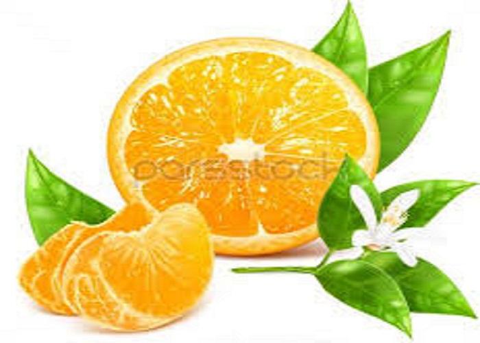 کارناوال شکوفه های پرتقال ترکیه - کارناوال شکوفه های پرتقال ترکیه در ابتدای آوریل