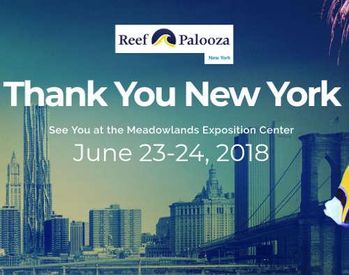 نمایشگاه های ماه جون نیویورک 3 1 - نمایشگاه های ماه جون 2019 نیویورک